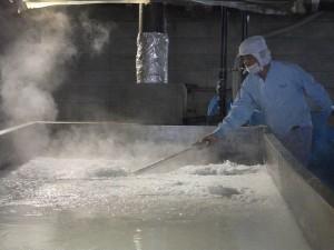 Salt Manufacturing Plant